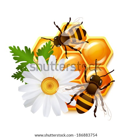 decorative sweet honeycomb bees