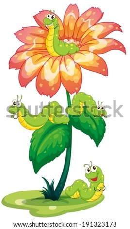 illustration of a big flower