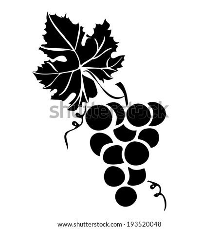 grape silhouette vector