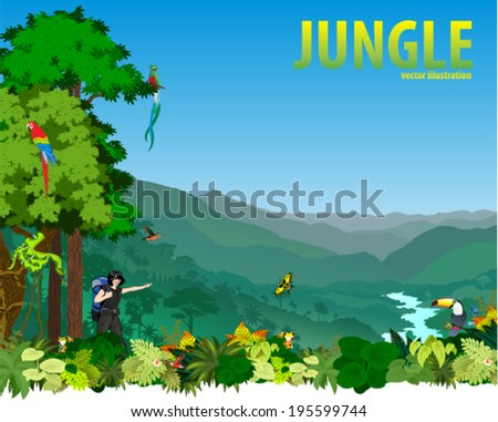 vector illustration river in