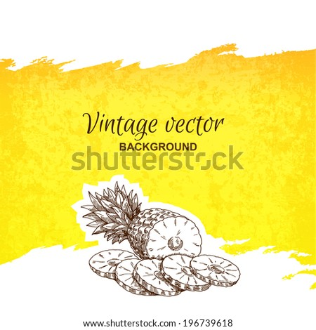 pineapple vintage  vector hand