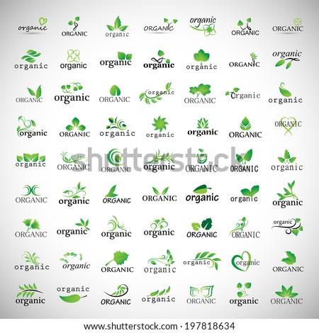 organic icons set   isolated on