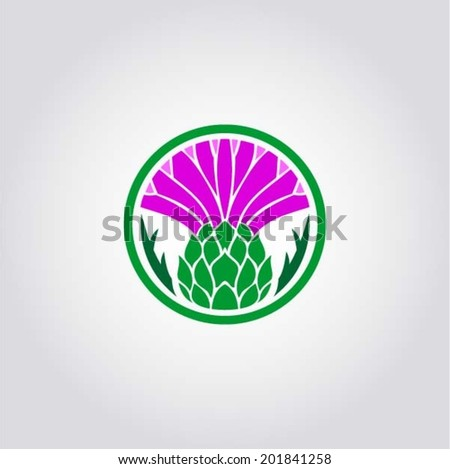 the thistle   floral emblem of