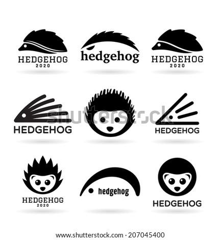 hedgehogs  1