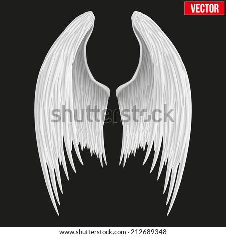 white folded angel wings