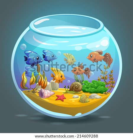 aquarium with fishes  algae and