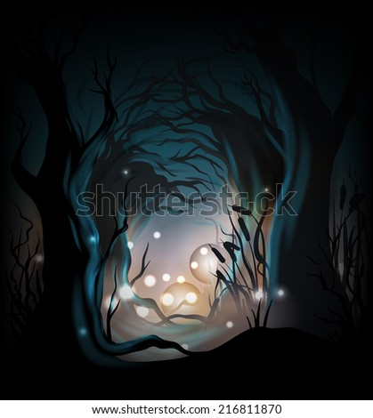 mysterious forest background