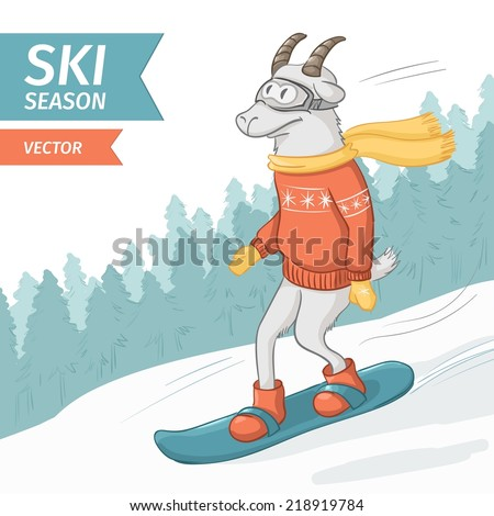 goat on a snowboard mountains