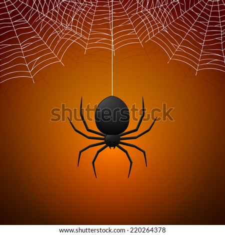 spider and cobwebs on orange