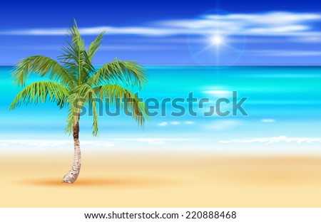 palm tree on the beach vector
