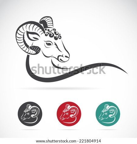 vector image of an sheep head