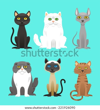 cat breed set  with black cat