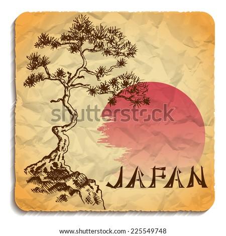 japanese pine tree and sun