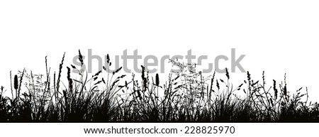 pattern strip of grass vector