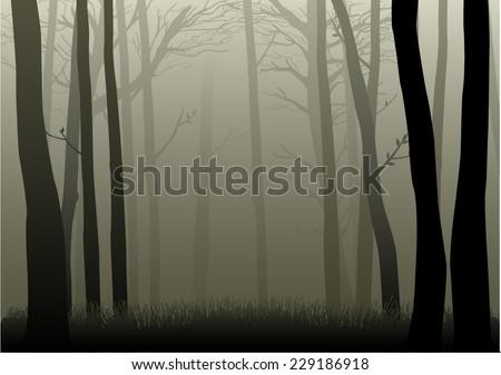 vector illustration of misty