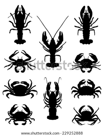 silhouettes of crabs  vector