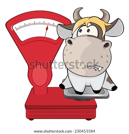 a small cow and weighing scale