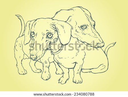 dog dachshund pair of lovers