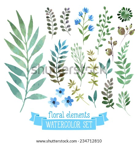 vector floral set colorful