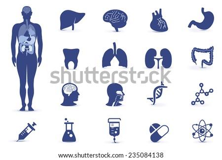 vector human organs icon set