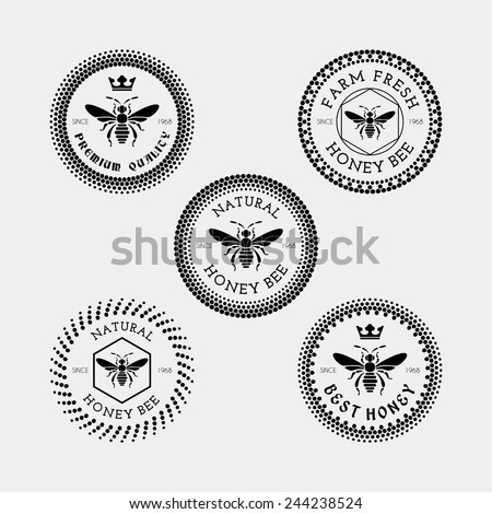 vector set of honey and bee