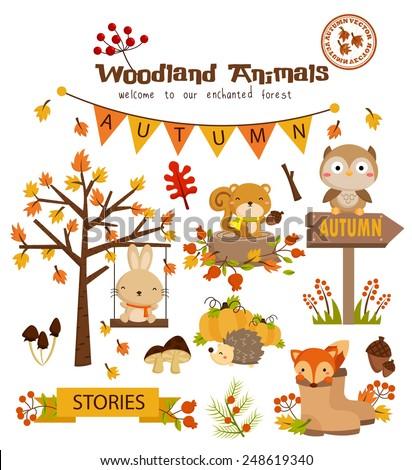 animal woodland autumn vector