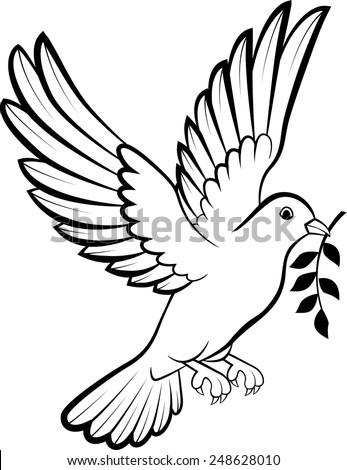 dove birds logo for peace