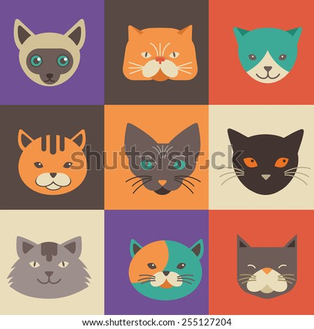 collection of cute cat vector