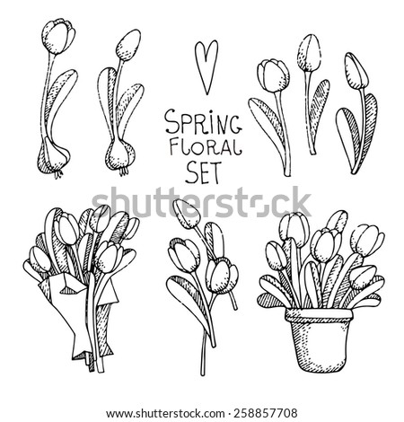 vector set of spring flowers in