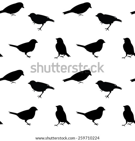 black and white birds pattern