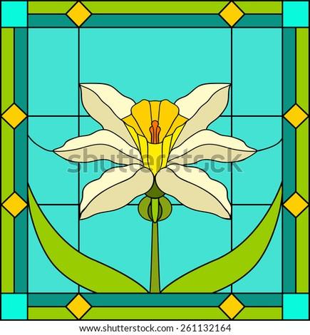 daffodils and iris bud  spring