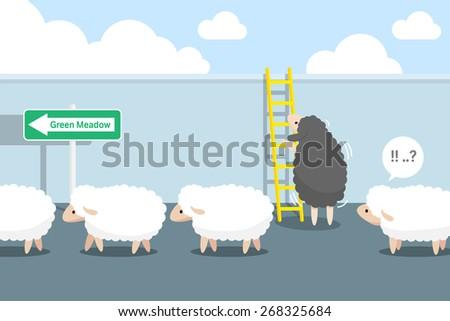 black sheep to climb the stairs