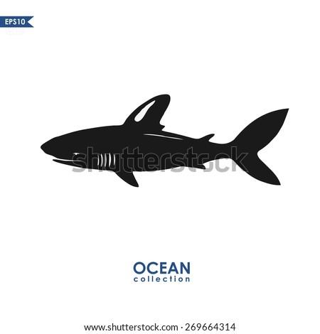 ocean collection  giant shark