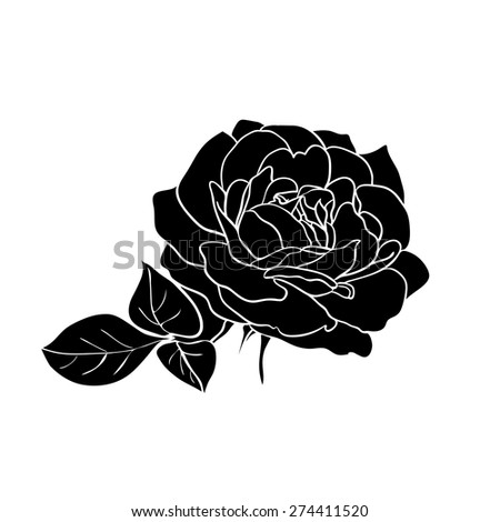 silhouette of rose isolated on