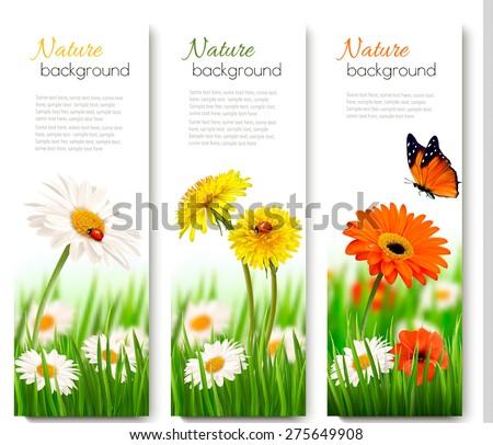 three summer nature banners