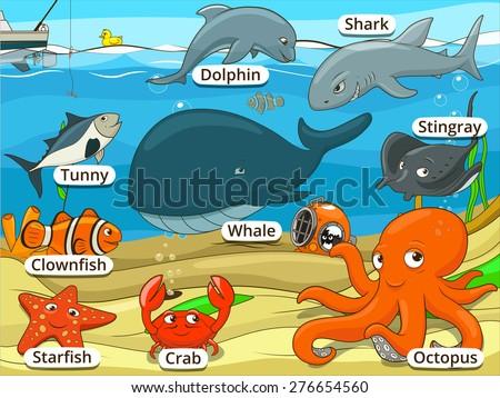 underwater animals and fish