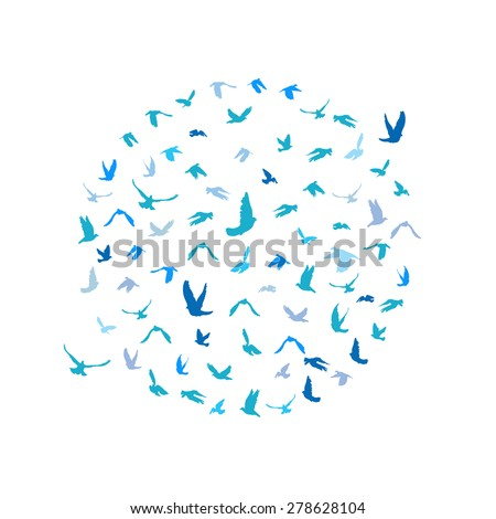 doves and pigeons set in a