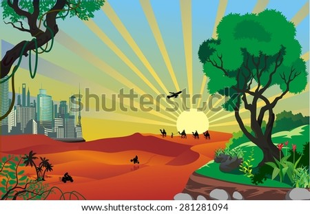 landscape   an oasis in the