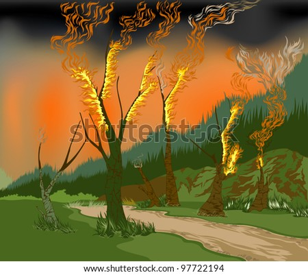 seasonal forest fires and