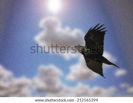 a bird flying over blue sky with clouds background toned with a vintage retro instagram filter effect (soft image with grain and noise added in) - stock photo