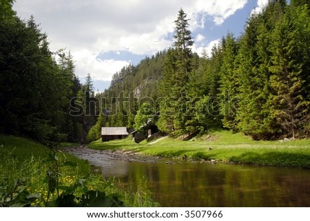 A cold river at green valley in mountains western Tatry - Rohace  in Slovakia in Europe - stock photo