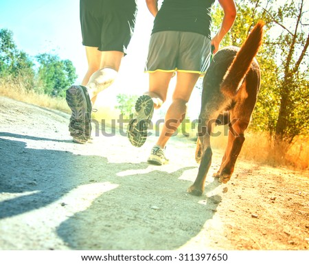 a dog out enjoying nature with two women jogging on a path cross toned with a retro vintage instagram filter app or action effect - stock photo