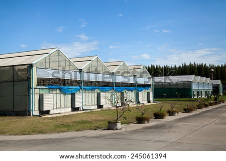 A group of greenhouses. - stock photo