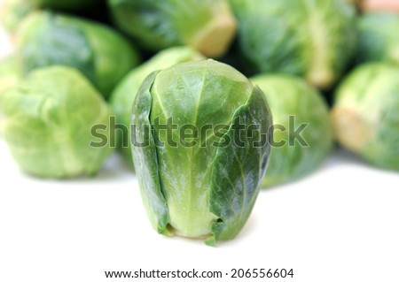 a lot of Brussels sprouts on white  - stock photo