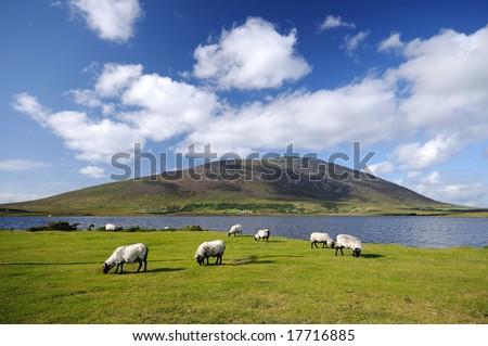 Achill Island , Ireland - stock photo