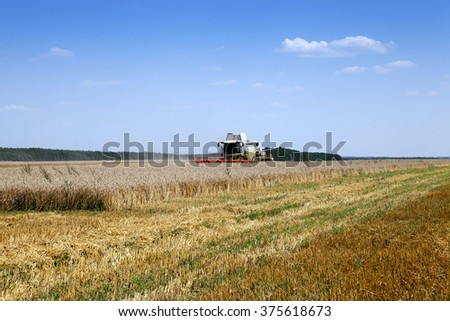 Agricultural field on which works Harvester, harvested cereals