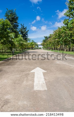 Arrow traffic symbol on the road between tree with blue sky. - stock photo