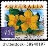 AUSTRALIA - CIRCA 2006: A stamp printed in Australia shows Hibbertia scandens, circa 2006 - stock photo