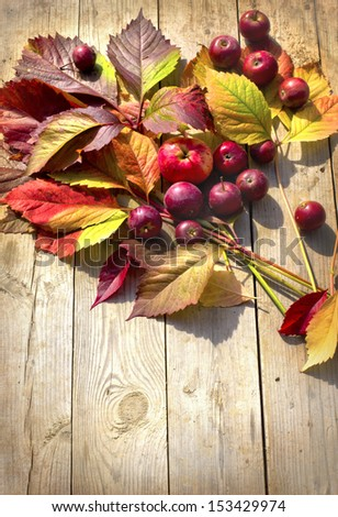 Autumn border from apples and fallen leaves on old wooden table/ Thanksgiving day concept/background with apples