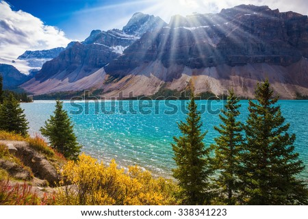 Banff National Park in the Canadian Rockies. The mountain glacial Bow Lake with green water. The lake is surrounded by pine trees
